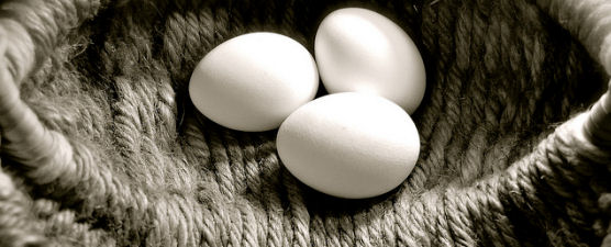http://www.shabayek.com/blog/wp-content/uploads/2011/11/eggs-basket-flickr.jpg